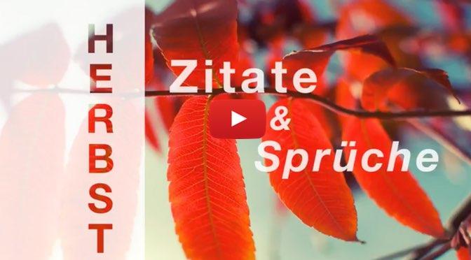 Video </br>Herbst </br>– Zitate und Sprüche