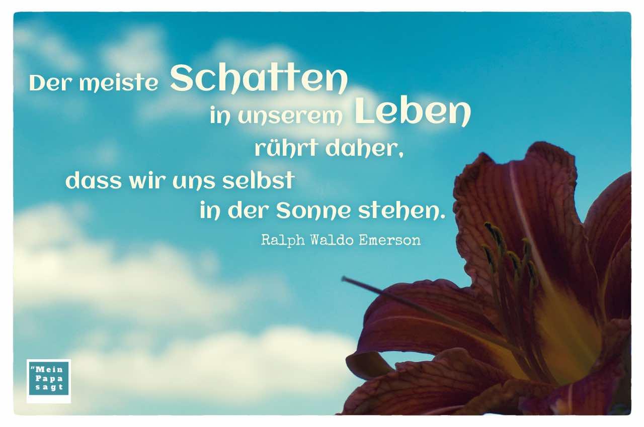 Schattige Blume vor blauem Himmel mit dem Emerson Zitat: Der meiste Schatten in unserem Leben rührt daher, dass wir uns selbst in der Sonne stehen. Ralph Waldo Emerson