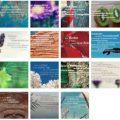 Zitate, Weisheiten und Sprüche und Bildern 2017
