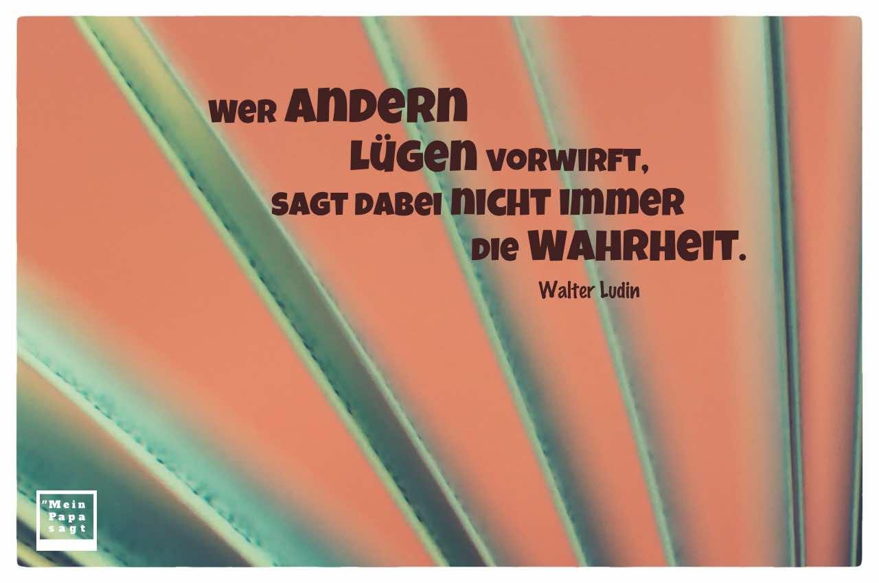 Seiten eines Buches mit dem Ludin Zitat: Wer andern Lügen vorwirft, sagt dabei nicht immer die Wahrheit. Walter Ludin