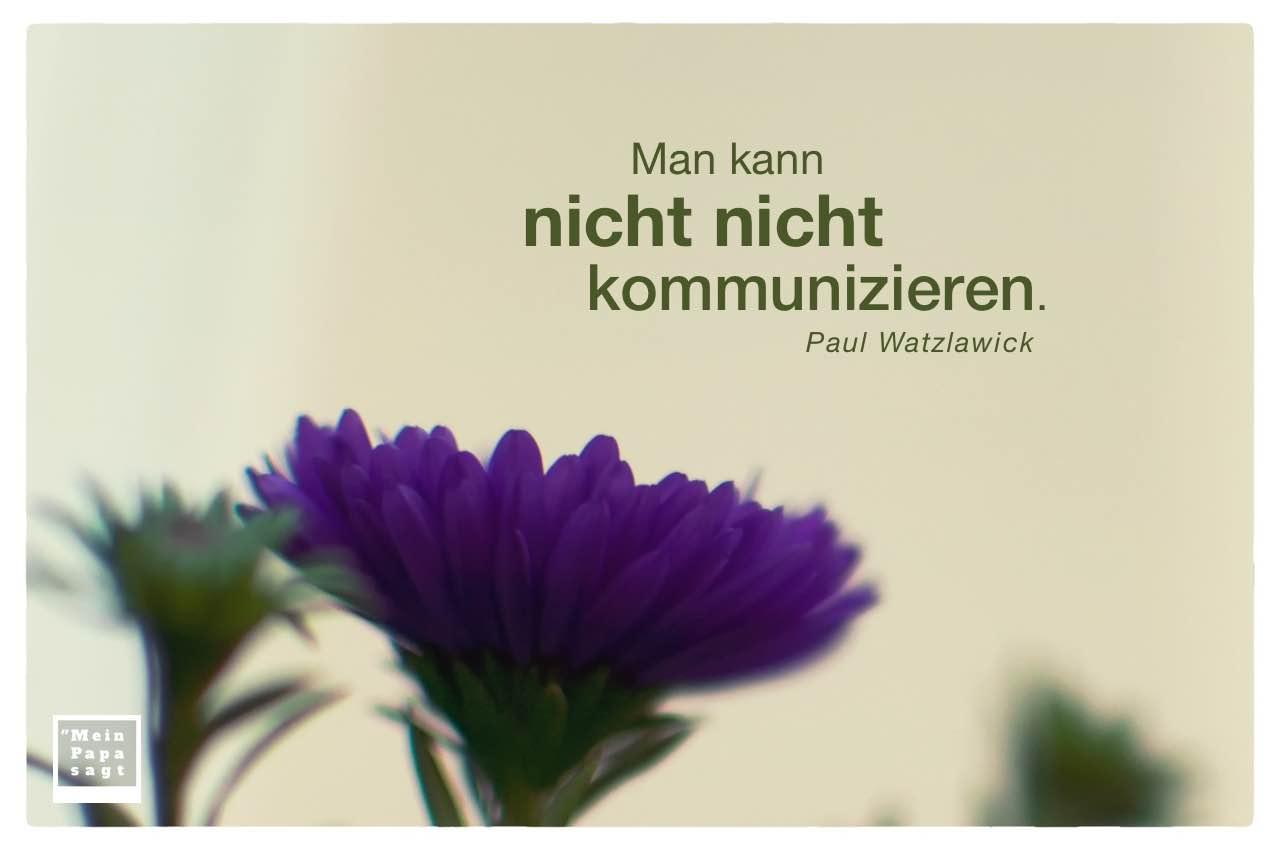 Astern mit dem Watzlawick Zitat: Man kann nicht nicht kommunizieren. Paul Watzlawick
