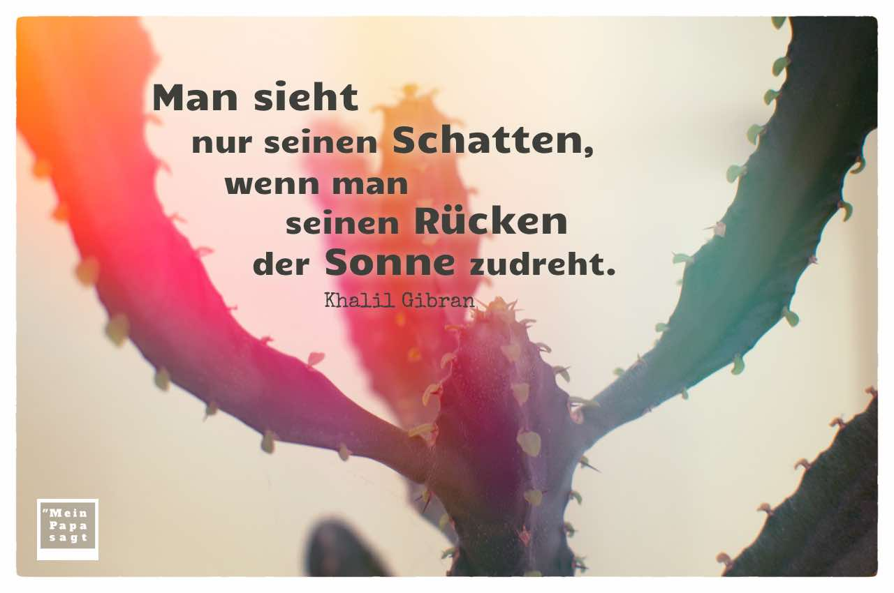 Kakteengewächs mit dem Gibran Zitat: Man sieht nur seinen Schatten, wenn man seinen Rücken der Sonne zudreht. Khalil Gibran