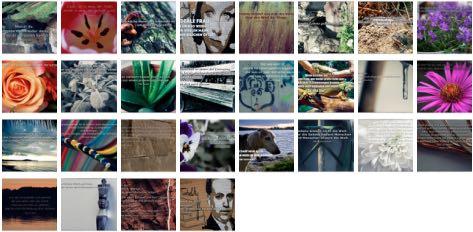 Übersichtsbild. Bilder Galerie mit Weisheiten, Zitaten und Sprüchen Februar 2015