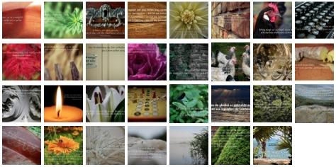 Bilder Galerie mit Weisheiten, Zitaten und Sprüchen Januar 2014
