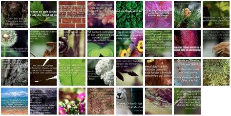 Übersichtsbild. Bilder Galerie mit Weisheiten, Zitaten und Sprüchen Mai 2014