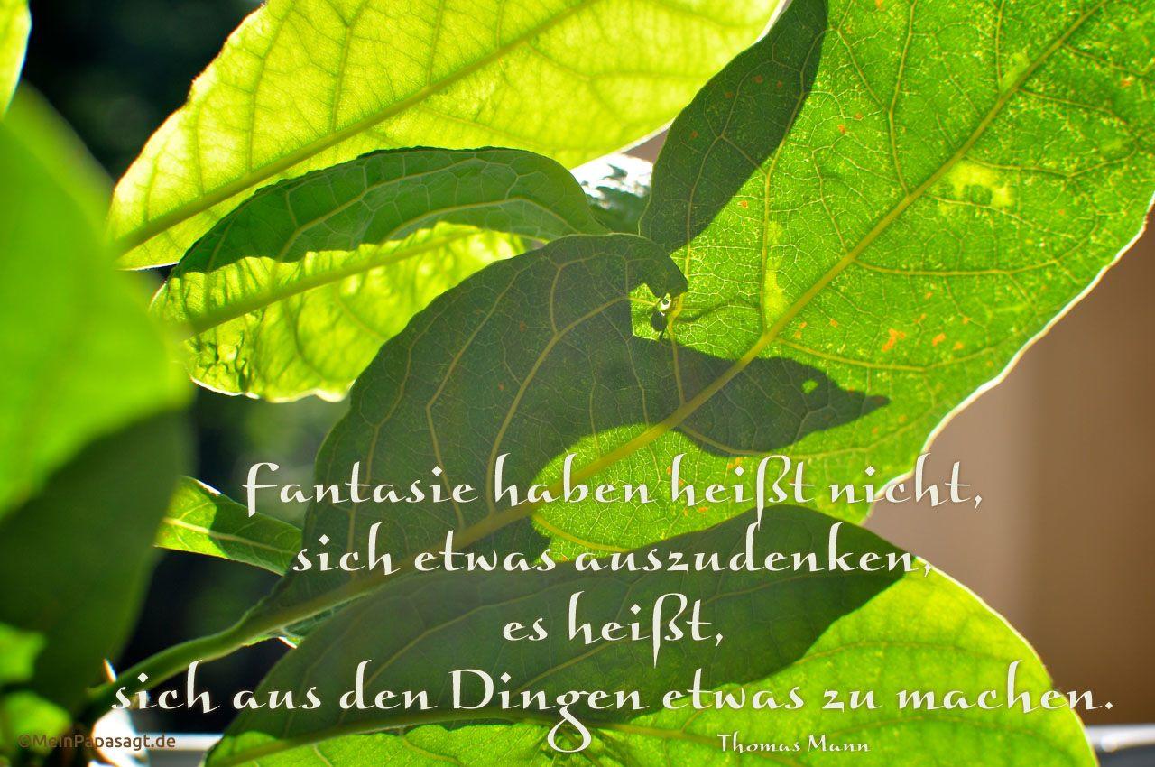 Schatten bildet einen Vogel in den Blättern einer Pflanze und dem Mann Zitat: Fantasie haben heißt nicht, sich etwas auszudenken, es heißt, sich aus den Dingen etwas zu machen. Thomas Mann