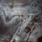 Struktur eines Steines mit dem Mutter Teresa Zitat: Kleine Dinge, mit Liebe getan, bringen Glück und Frieden. Mutter Teresa