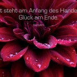 Blütenkelch einer Pflanze mit dem Demokrit Zitat: Mut steht am Anfang des Handelns, Glück am Ende. Demokrit
