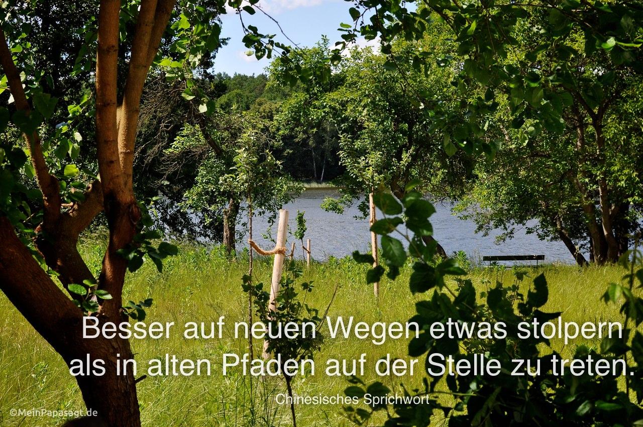 Berlin - Grunewaldsee mit dem Chinesischen Sprichwort: Besser auf neuen Wegen etwas stolpern als in alten Pfaden auf der Stelle zu treten. Chinesisches Sprichwort
