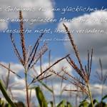 Maispflanze vor leicht wolkigen Himmel mit dem Chardonne Zitat: Das Geheimnis für ein glückliches Leben mit einem geliebten Menschen heißt: Versuche nicht, ihn zu verändern. Jacques Chardonne