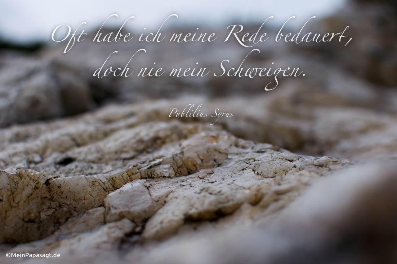 Stein - Nahaufnahme mit dem Zitat: Oft habe ich meine Rede bedauert, doch nie mein Schweigen. Publilius Syrus