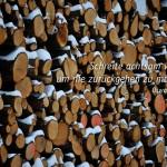 Verschneite Baumstämme im Berliner Grunewald mit dem Wirth Zitat: Schreite achtsam voran, um nie zurückgehen zu müssen. Oswald Wirth