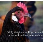 Stolzer Gockel mit dem Hinrich Zitat: Erfolg steigt nur zu Kopf, wenn dort der erforderliche Hohlraum vorhanden ist. Manfred Hinrich