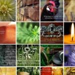 Galerie - Rückblick - Zitate mit Bildern