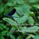 Libelle mit dem Wilde Zitat: Ich bin gern der einzige, der redet - das spart Zeit und verhindert Streitereien.Oscar Wilde