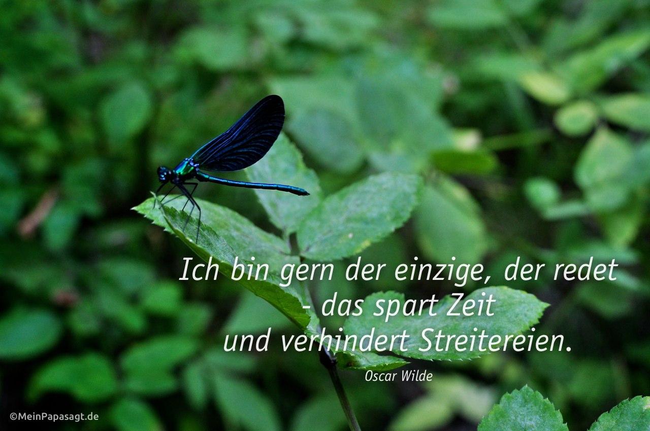 Libelle mit dem Wilde Zitat: Ich bin gern der einzige, der redet - das spart Zeit und verhindert Streitereien. Oscar Wilde