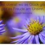 Nahaufnahme eines Blütenkelchs, Fast überall wo es Glück gibt, gibt es Freude am Unsinn. Friedrich Nietzsche