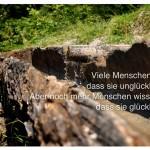Wassertränke in den bayerischen Alpen. Viele Menschen wissen, dass sie unglücklich sind. Aber noch mehr Menschen wissen nicht, dass sie glücklich sind. Albert Schweitzer