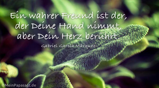 Ein wahrer Freund ist…