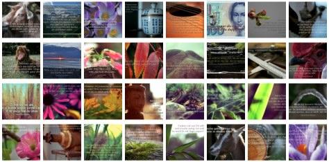 Übersichtsbild. Bilder Galerie mit Weisheiten, Zitaten und Sprüchen März 2014