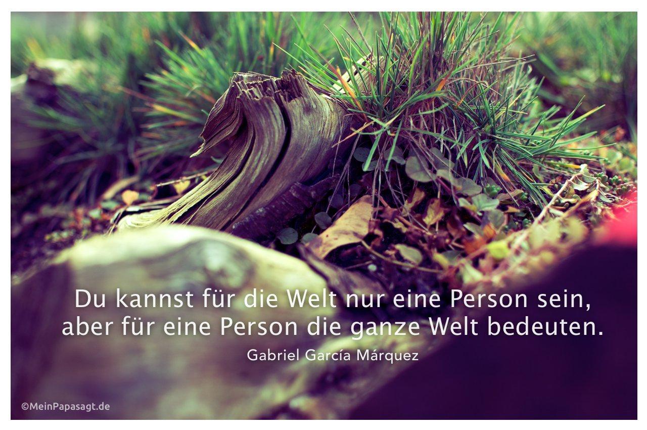 Waldboden mit dem Zitat: Du kannst für die Welt nur eine Person sein, aber für eine Person die ganze Welt bedeuten. Gabriel García Márquez