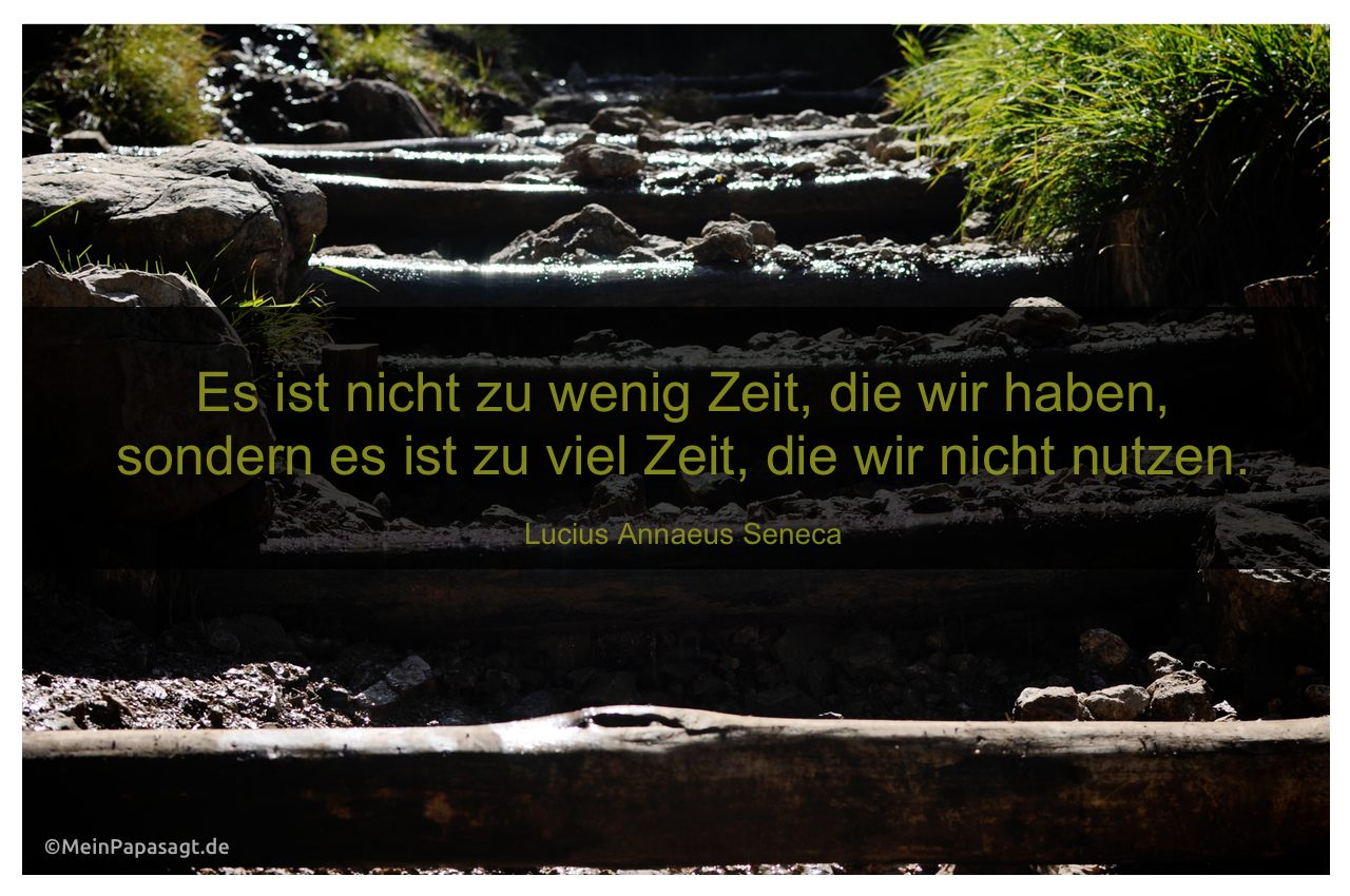 Image Result For Zitate Goethe Wissen