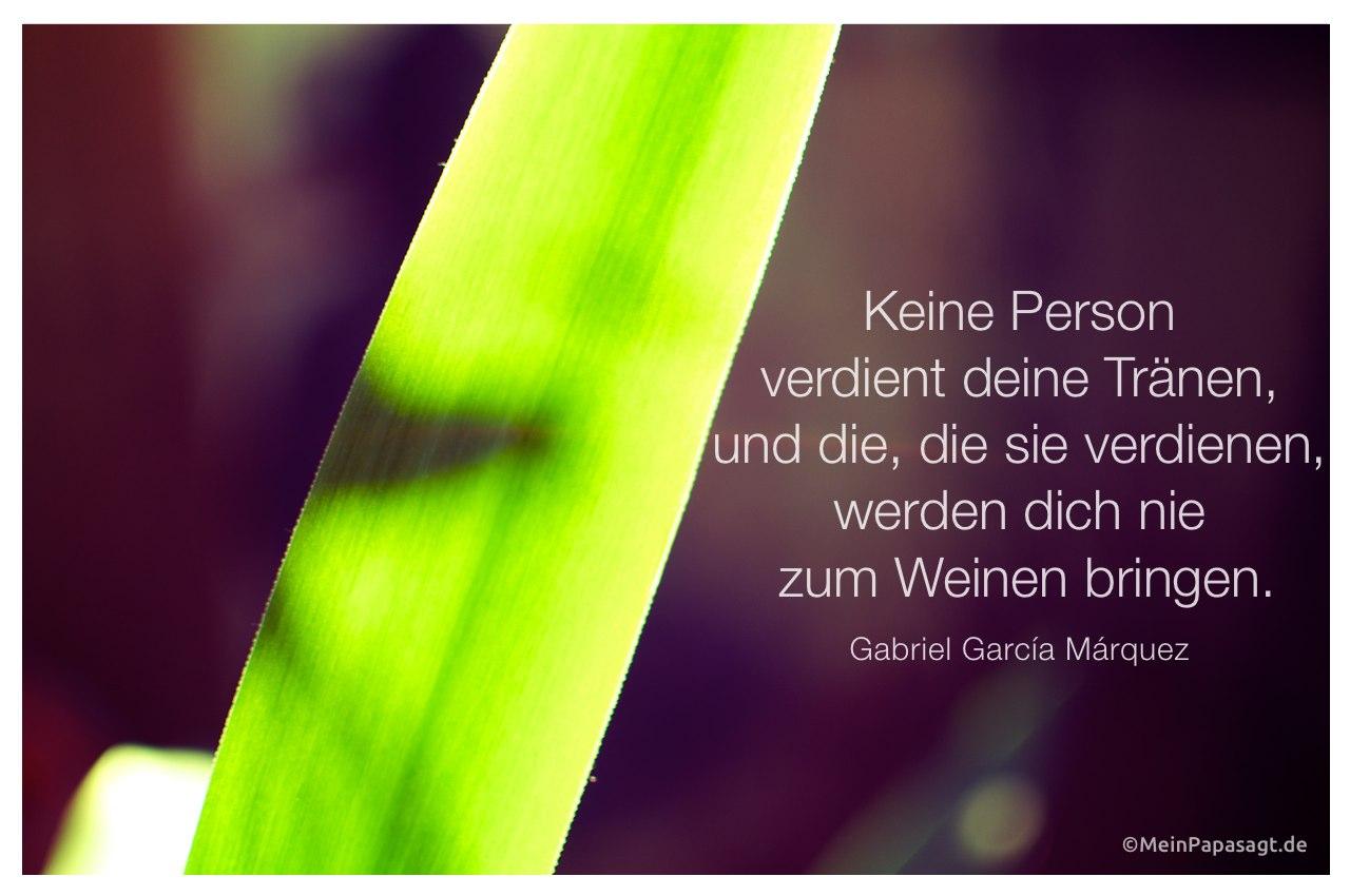 Palmenblatt mit dem Zitat: Keine Person verdient deine Tränen, und die, die sie verdienen, werden dich nie zum Weinen bringen.  Gabriel García Márquez