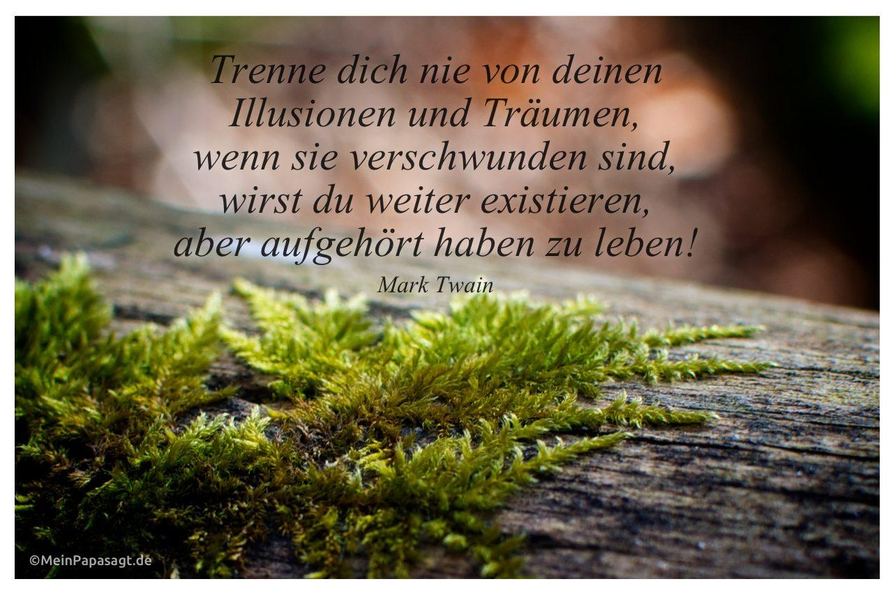 Moos an einem Baumstamm mit dem Mark Twain Zitat: Trenne dich nie von deinen Illusionen und Träumen, wenn sie verschwunden sind, wirst du weiter existieren, aber aufgehört haben zu leben! Mark Twain