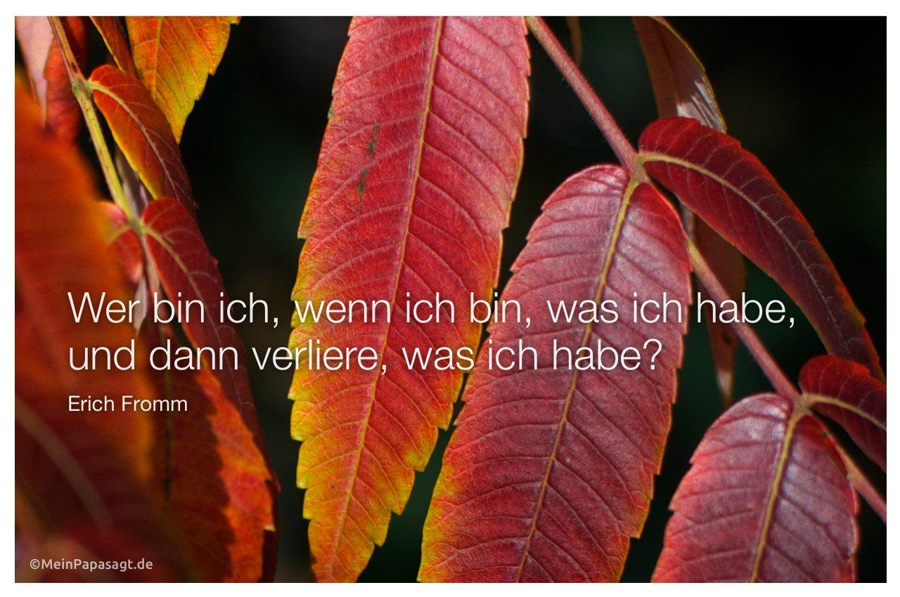 Herbst Blätter mit dem Zitat: Wer bin ich, wenn ich bin, was ich habe, und dann verliere, was ich habe? Erich Fromm