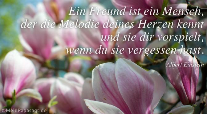 Ein Freund ist ein Mensch…