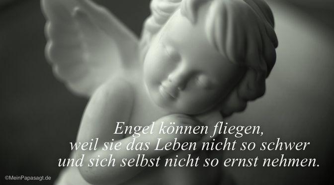 Engel können fliegen…