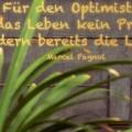 Für den Optimisten...