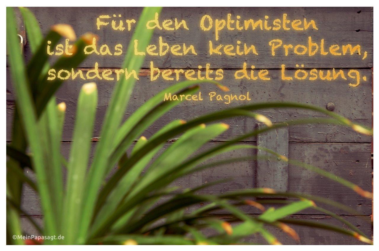Fur Den Optimisten Ist Das Leben Kein Problem Sondern Bereits Die