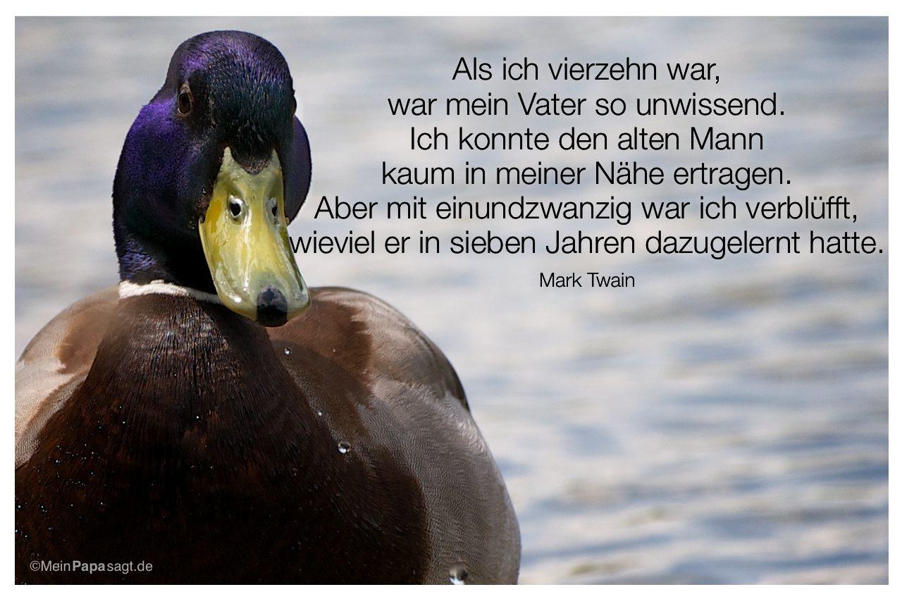 Ente mit dem Mark Twain Zitat: Als ich vierzehn war, war mein Vater so unwissend. Ich konnte den alten Mann kaum in meiner Nähe ertragen. Aber mit einundzwanzig war ich verblüfft, wieviel er in sieben Jahren dazugelernt hatte. Mark Twain