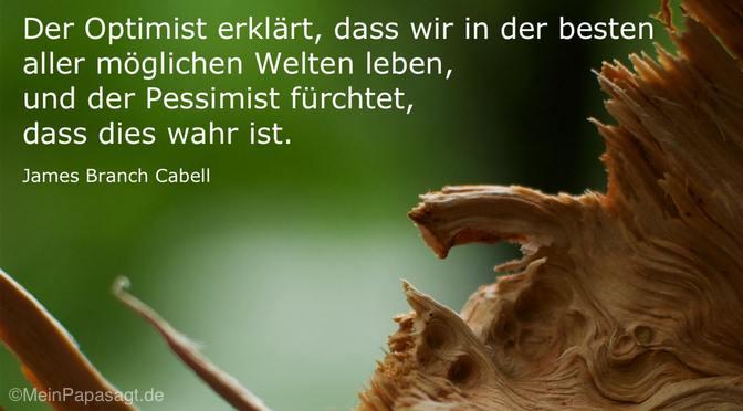 Der Optimist erklärt…