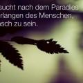 Die Sehnsucht nach dem Paradies...