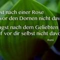 Du fragst nach einer Rose...