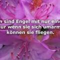 Menschen sind Engel...