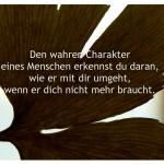 Ginkgo mit dem Zitat: Den wahren Charakter eines Menschen erkennst du daran, wie er mit dir umgeht, wenn er dich nicht mehr braucht.