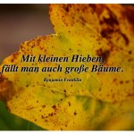 Herbstlaub mit dem Zitat: Mit kleinen Hieben, fällt man auch große Bäume. Benjamin Franklin