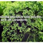 Gemüse mit dem Zitat: Wer ständig glücklich sein möchte, muss sich oft verändern. Konfuzius