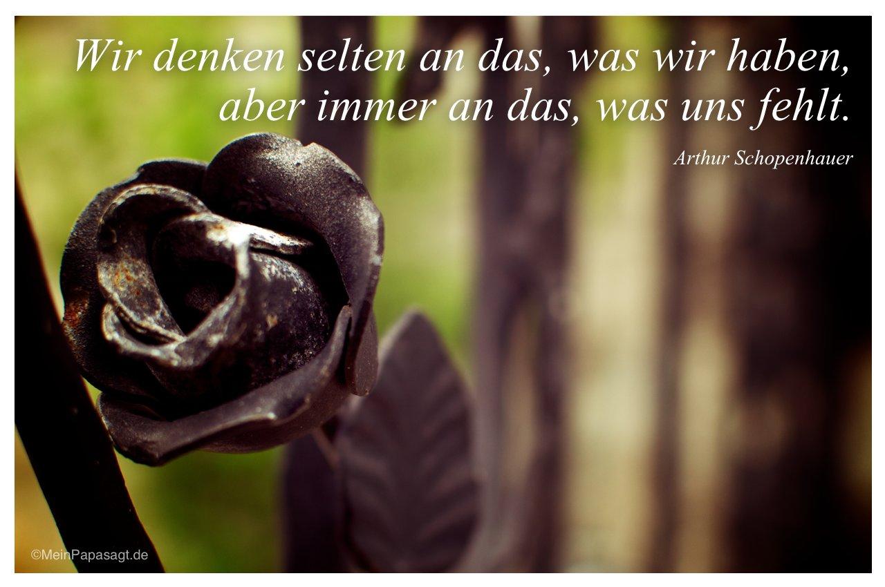 Gartenzaun mit dem Zitat: Wir denken selten an das, was wir haben, aber immer an das, was uns fehlt. Arthur Schopenhauer