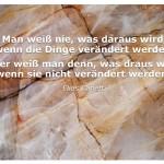 Steinstruktur mit dem Zitat: Man weiß nie, was daraus wird, wenn die Dinge verändert werden. Aber weiß man denn, was draus wird, wenn sie nicht verändert werden? Elias Canetti