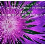 Blume mit dem Zitat: Wer sich zu groß fühlt, um kleine Aufgaben zu erfüllen, ist zu klein um mit großen Aufgaben betraut zu werden. Jaques Tati
