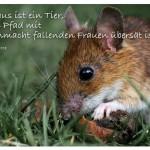 Maus mit dem Zitat: Die Maus ist ein Tier, dessen Pfad mit in Ohnmacht fallenden Frauen übersät ist. Ambrose Bierce