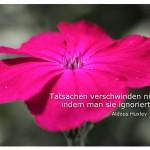 Blütenkelch mit dem Zitat: Tatsachen verschwinden nicht, indem man sie ignoriert. Aldous Huxley