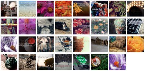 Übersichtsbild. Bilder Galerie mit Weisheiten, Zitaten und Sprüchen Dezember 2014