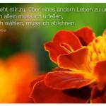 Blütenkelch mit dem Zitat: Nicht steht mir zu, über eines andern Leben zu urteilen! Für mich allein muss ich urteilen, muss ich wählen, muss ich ablehnen. Hermann Hesse