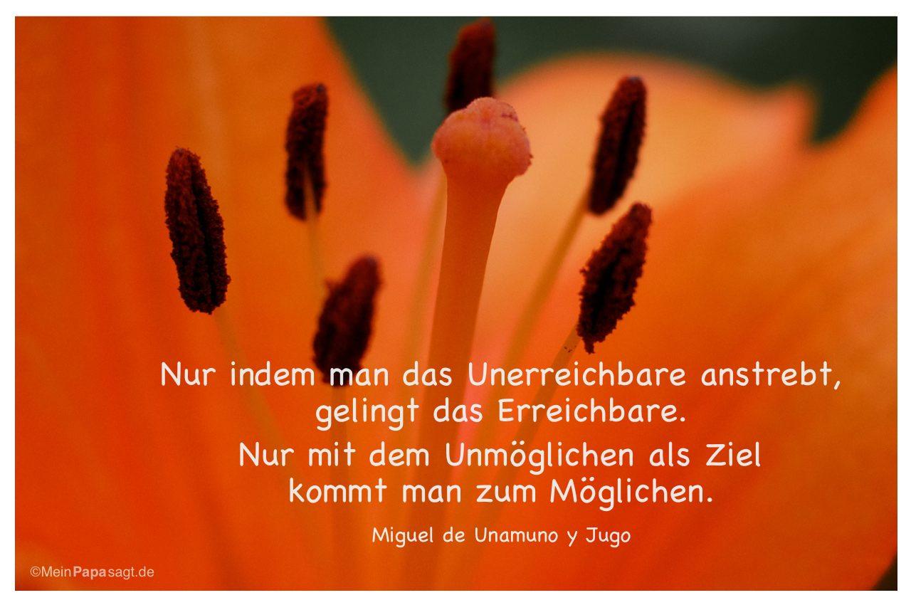 Lilie mit dem Zitat: Nur indem man das Unerreichbare anstrebt, gelingt das Erreichbare. Nur mit dem Unmöglichen als Ziel kommt man zum Möglichen. Miguel de Unamuno y Jugo