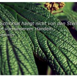 Blatt mit dem Zitat: Unser Schicksal hängt nicht von den Sternen ab, sondern von unserem Handeln. William Shakespeare